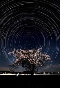 聖天宮 (Xien Ten Gong) 日本 埼玉県 坂戸市の写真素材 [FYI03417715]