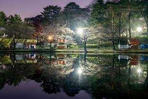 大宮公園 日本 埼玉県 さいたま市の写真素材 [FYI03417733]
