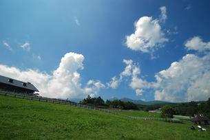 夏の牧場の写真素材 [FYI03417742]