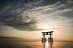 明け方の白髭神社 滋賀県の写真素材 [FYI03417754]