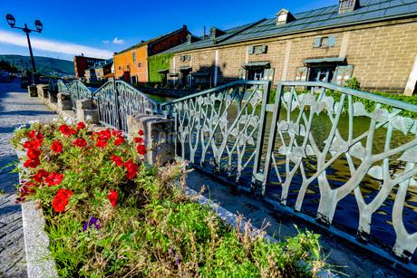 小樽運河と倉庫群と遊歩道の花の写真素材 [FYI03417762]