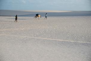 風紋のレンソイス砂漠を歩く人の写真素材 [FYI03417783]