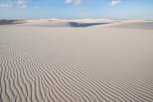 レンソイス砂漠の風紋と夕日の写真素材 [FYI03417792]