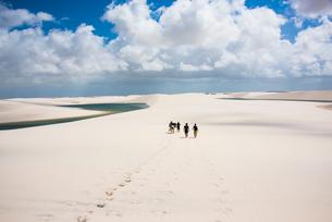 レンソイス砂漠を歩く人と足跡の写真素材 [FYI03417806]
