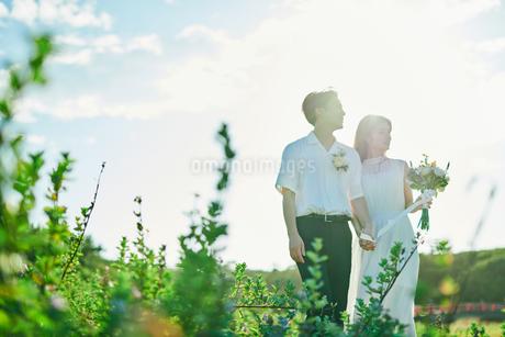 ウェディング カップル 花畑の写真素材 [FYI03417962]