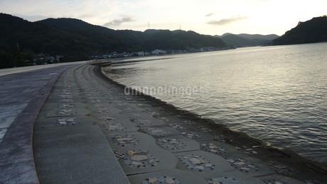 坂越(さこし)の海in兵庫県赤穂市の写真素材 [FYI03418121]