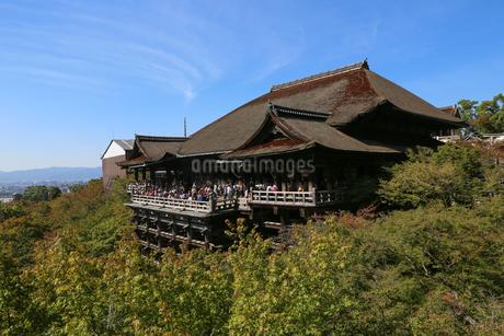 清水寺の写真素材 [FYI03418239]