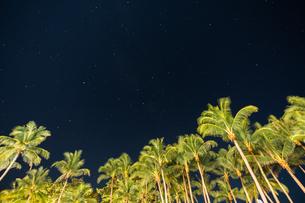 南国の夜空の写真素材 [FYI03418411]