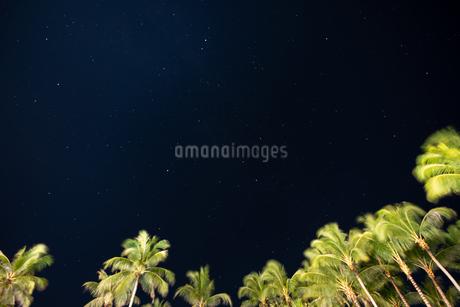 南国の夜空の写真素材 [FYI03418412]