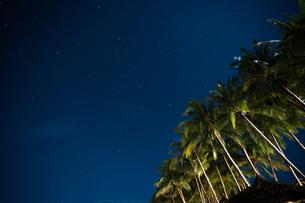 南国の夜空の写真素材 [FYI03418414]