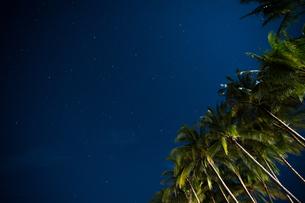 南国の夜空の写真素材 [FYI03418415]