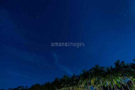 南国の夜空の写真素材 [FYI03418417]
