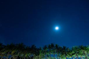 南国の月と星の写真素材 [FYI03418418]