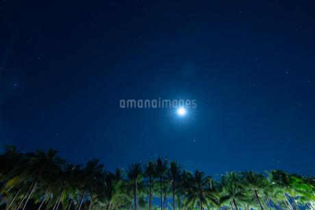 南国の月と星の写真素材 [FYI03418419]