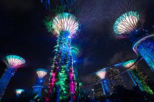 シンガポールの夜景の写真素材 [FYI03418422]