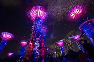 シンガポールの夜景の写真素材 [FYI03418423]