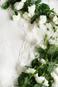レースとリネンの上に置かれた白いバラの花の写真素材 [FYI03418443]