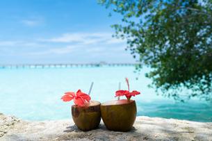 椰子の実ジュースの写真素材 [FYI03418503]