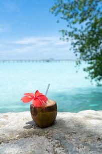 椰子の実ジュースの写真素材 [FYI03418504]