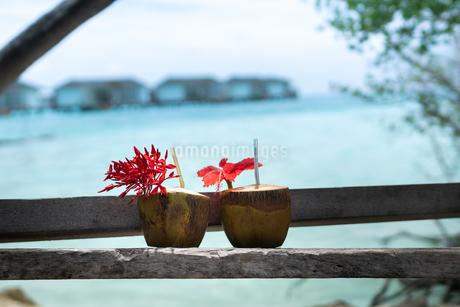 椰子の実ジュースの写真素材 [FYI03418510]