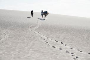 レンソイス砂漠を歩く人と足跡の写真素材 [FYI03418541]