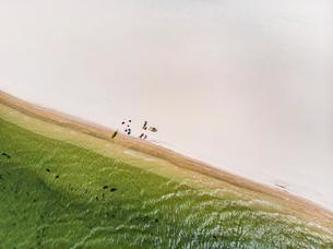 レンソイス砂漠のビーチで休む人々の写真素材 [FYI03418554]