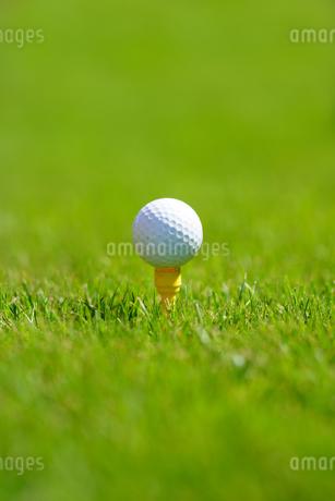 ゴルフボールの写真素材 [FYI03418615]
