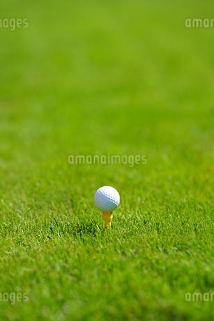 ゴルフボールの写真素材 [FYI03418617]