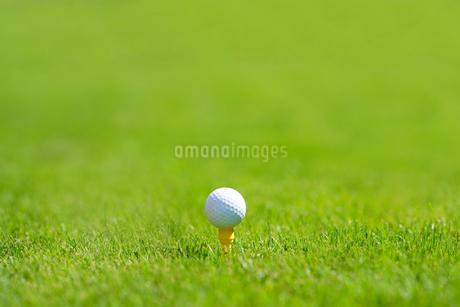 ゴルフボールの写真素材 [FYI03418618]