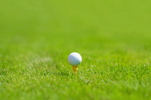 ゴルフボールの写真素材 [FYI03418619]