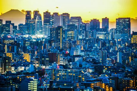 文京シビックセンターからの夕景(新宿方面)の写真素材 [FYI03418898]