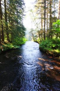 川から水が落ちる場所の写真素材 [FYI03419051]