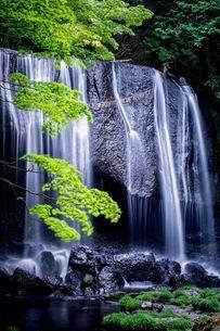 達沢不動滝 日本 福島県 猪苗代町の写真素材 [FYI03419094]