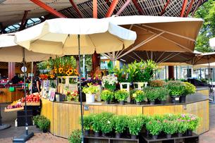 エストニア・タリン旧市街はずれにあるバルト市場(近年リノベーションされました)の売り場に並ぶ花や野菜・旧市街は世界遺産の写真素材 [FYI03419203]