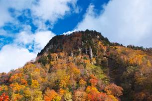 層雲峡の紅葉の写真素材 [FYI03419409]