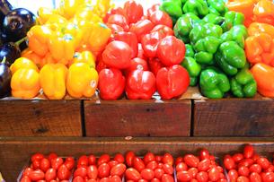 黄色と赤と緑とオレンジの野菜の写真素材 [FYI03420135]