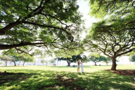 草原で赤ちゃんを抱くハワイアンドレスとアロハシャツを着る夫婦の写真素材 [FYI03420144]