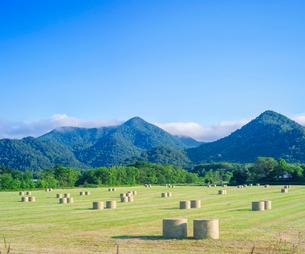 北海道 自然 風景 牧草地と青空の写真素材 [FYI03420294]