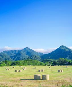 北海道 自然 風景 牧草地と青空の写真素材 [FYI03420295]