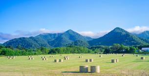 北海道 自然 風景 パノラマ 牧草地と青空の写真素材 [FYI03420296]