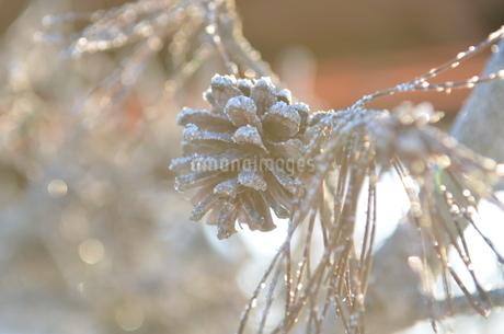 樹氷の写真素材 [FYI03420380]
