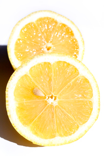 檸檬 レモンの写真素材 [FYI03420507]