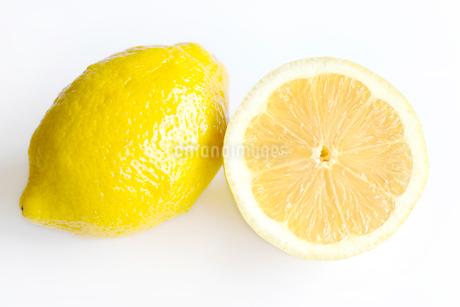 檸檬 レモン の写真素材 [FYI03420509]
