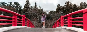 red bridgeの写真素材 [FYI03420628]