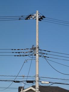 住宅街の送電線の写真素材 [FYI03420735]