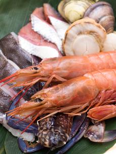 海鮮鍋の具材の写真素材 [FYI03420799]