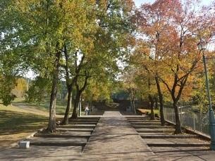 公園の写真素材 [FYI03420890]