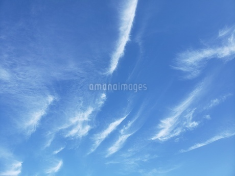 空の写真素材 [FYI03420903]