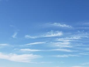 空の写真素材 [FYI03420936]