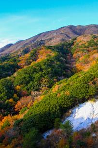 竜ヶ岳の写真素材 [FYI03421186]